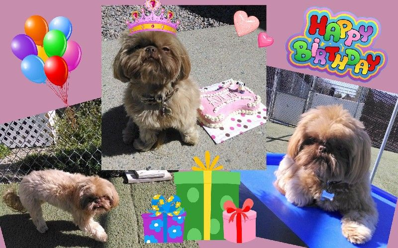Avery's Birthday!