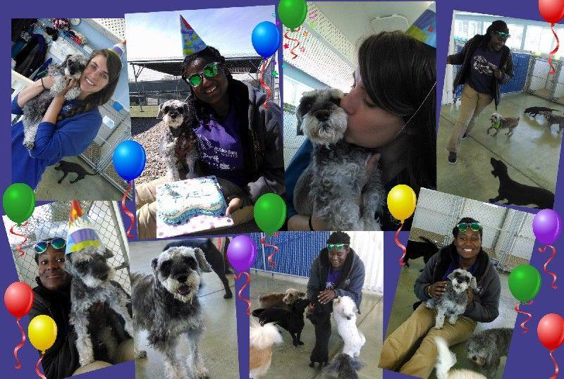 Axel's Birthday!