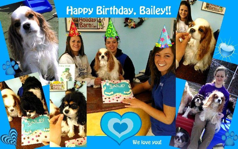 Bailey's Birthday!