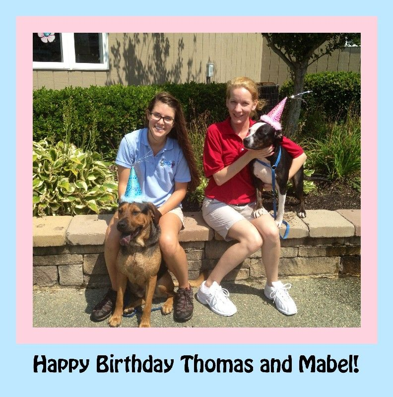 Thomas and Mabel celebrate their birthday together!