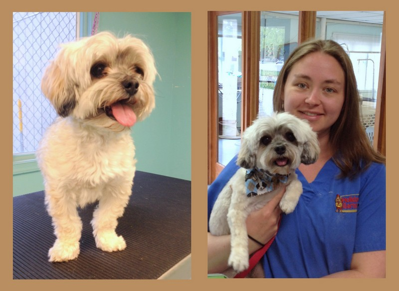 Ty's Before and After pictures with Mandy!