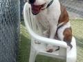 Gus takes a seat!