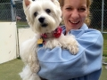 Beautiful westie with Kat!