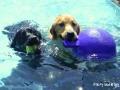 Finley and Brady - Friendship Day