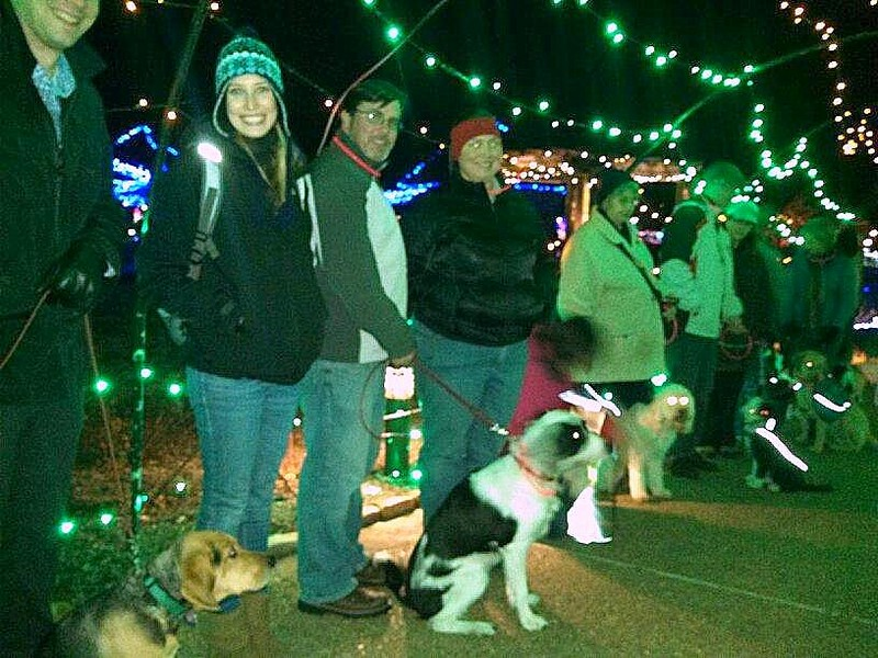 Lewis Ginter Christmas Lights pack walk!