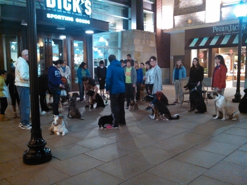 Pack walk at Stony Point Mall!