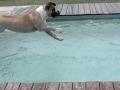 Zhenga loves diving!