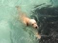 Brian enjoying the pool.