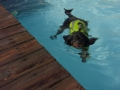 Swimming in a flotation jacket!