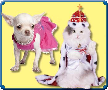 Dress up your pet!