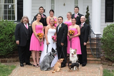 Your Paw-fect Wedding