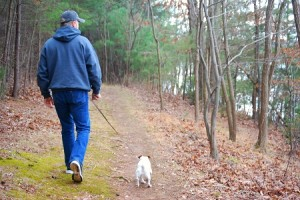Dog Friendly Parks in VA