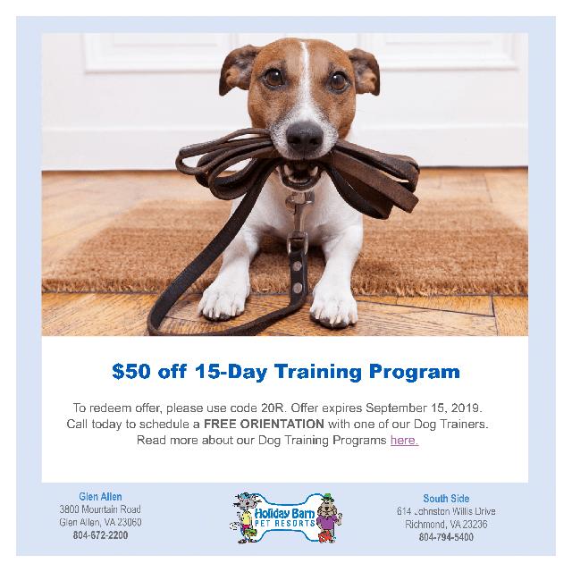 WTVR Dog Training Offer July 2019