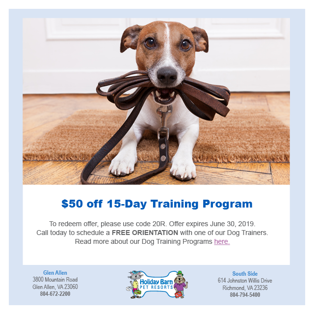 WTVR Dog Training Offer May 2019