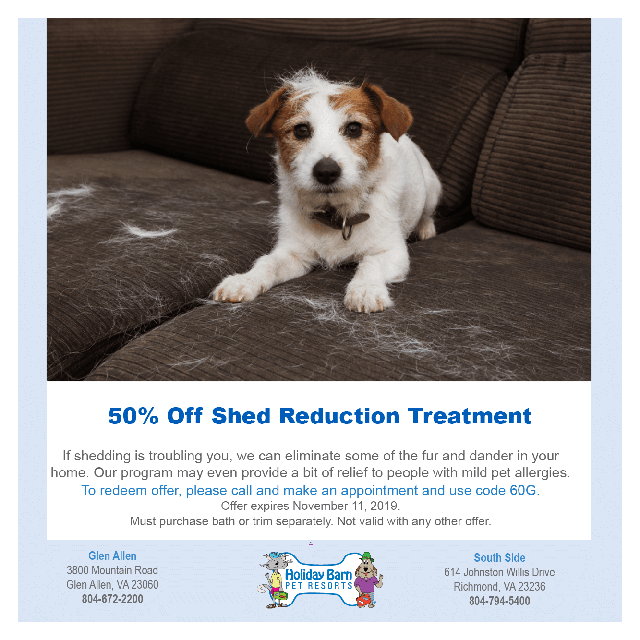 Dog Grooming Landing Page September 2019