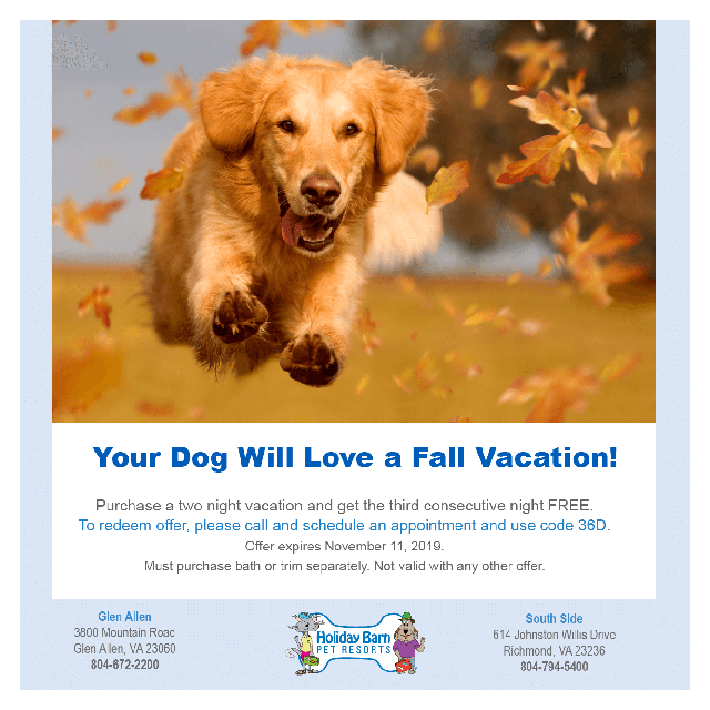 Dog Vacation Landing Page Sept 2019