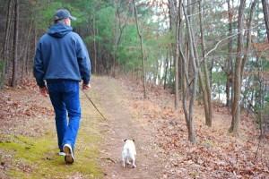Dog Friendly Parks in VA